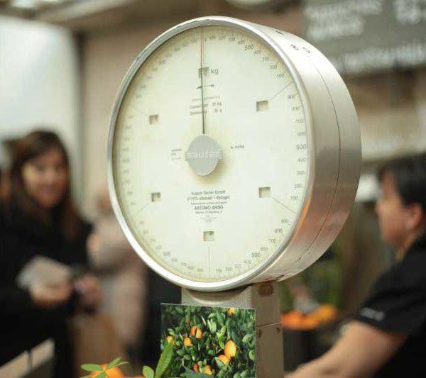 Come perdere peso e grasso addominale con i probiotici (e cosa sono)