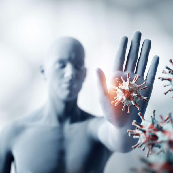 Immunosenescenza ed alimentazione: come contrastare l'invecchiamento immunitario